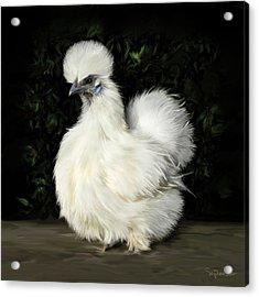 24. Tiny White Silkie Acrylic Print