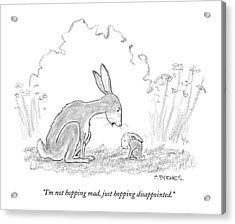 I'm Not Hopping Mad Acrylic Print by Pat Byrnes