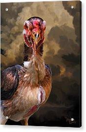 25. Yamato Hen Acrylic Print by Sigrid Van Dort