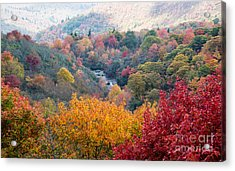 2503 Upper Falls At Graveyard Fields Acrylic Print by Stephen Parker