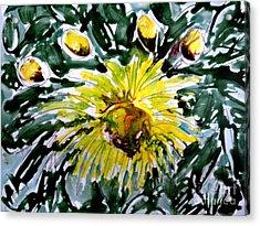 Zenmoksha Flowers Acrylic Print by Baljit Chadha