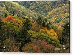 2681 Blue Ridge Parkway Acrylic Print by Stephen Parker
