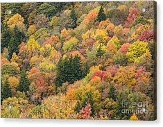 2682 Blue Ridge Parkway Acrylic Print
