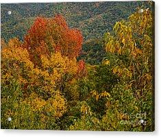 2689 Blue Ridge Parkway Acrylic Print by Stephen Parker
