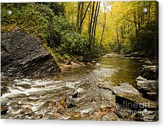 2725 Looking Glass Falls Acrylic Print by Stephen Parker