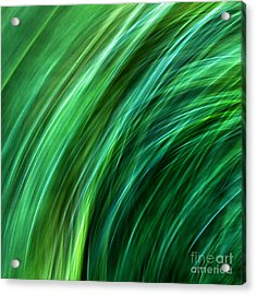 Meditations On Movement In Nature Acrylic Print