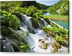 The Plitvice Lakes In The National Park Acrylic Print by Martin Zwick