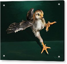 29. Yamato Chick Acrylic Print