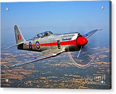 A Hawker Sea Fury T.mk.20 Dreadnought Acrylic Print by Scott Germain