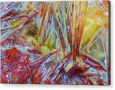 Agate In Colorful Design, Sammamish Acrylic Print by Darrell Gulin