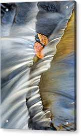 Autumn Color Caught In Time Acrylic Print