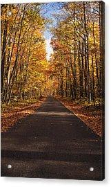 Autumn Drive Acrylic Print by Andrew Soundarajan