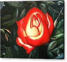 Acrylic Print featuring the painting Betty Boop Rose by June Holwell
