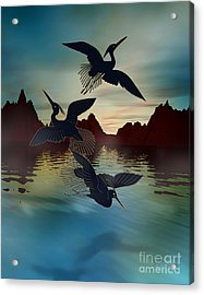 3 Black Herons At Sunset Acrylic Print by Bedros Awak