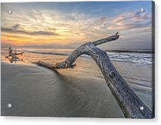 Bough In Ocean Acrylic Print