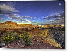 Boundless Acrylic Print by Stephen Campbell