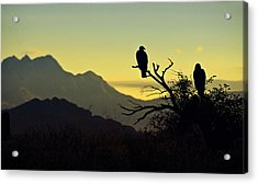 By Dawn's Early Light  Acrylic Print