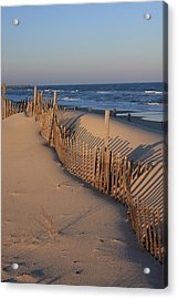 Cape Hatteras Dunes  Acrylic Print by Mountains to the Sea Photo
