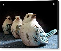 3 Cheeky Chicks 2 Acrylic Print