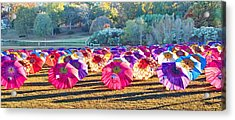Colorful Umbrellas At The Park Acrylic Print
