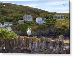 Cornwall - Port Isaac Acrylic Print