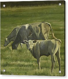 Acrylic Print featuring the painting 3 Cows In The Pasture by John Reynolds