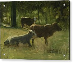 Acrylic Print featuring the painting Cows In The Sun by John Reynolds