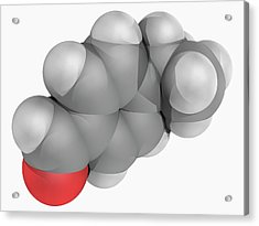Cuminaldehyde Molecule Acrylic Print by Laguna Design/science Photo Library