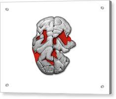 Damaged Human Brain Acrylic Print by Victor De Schwanberg