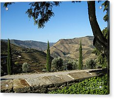 Acrylic Print featuring the photograph Douro River Valley by Arlene Carmel
