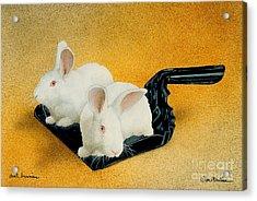Dust Bunnies... Acrylic Print by Will Bullas