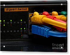 Ethernet Cables Plugged Into Router Acrylic Print by Amy Cicconi