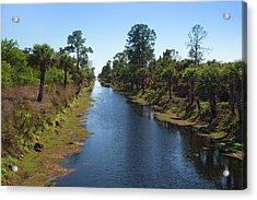 Everglades Restoration Acrylic Print by Jim West