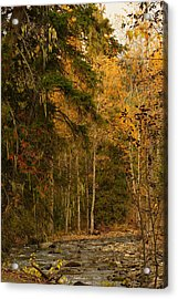 Fall At Sheep Creek Acrylic Print