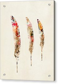 3 Feathers Acrylic Print by Bri B