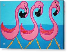 3 Flamingos  Acrylic Print by Matthew Brzostoski