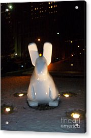 Acrylic Print featuring the photograph Funny Killer Bunny by Kelly Awad