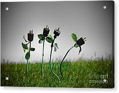 Growing Green Energy Acrylic Print by Amy Cicconi