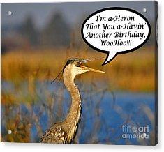 Happy Heron Birthday Card Acrylic Print by Al Powell Photography USA