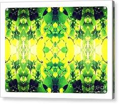 Hikari Acrylic Print by Yuuya Yokoyama