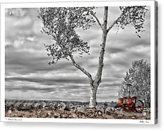 Hilltop Farm Acrylic Print by Richard Bean