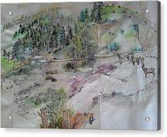 Idaho Her Tales And Trees Acrylic Print