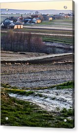 Landscape Acrylic Print by Anna Gora