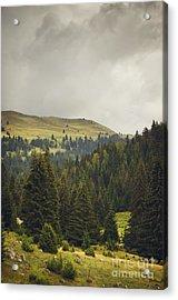 Landscape Acrylic Print by Jelena Jovanovic