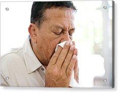 Man Sneezing Acrylic Print by Ian Hooton/science Photo Library