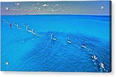 Miami Beach Regatta Acrylic Print by Steven Lapkin