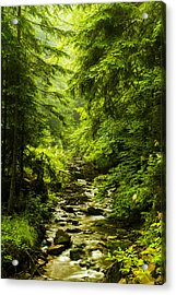 Acrylic Print featuring the photograph Mountain Stream by Jaroslaw Grudzinski