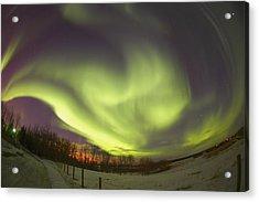 Northern Lights, Edmonton, Alberta Acrylic Print by Carson Ganci