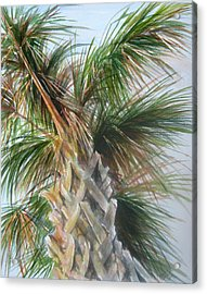 Acrylic Print featuring the painting Palmetto 2011 by Gloria Turner