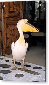 Pelican In Mykonos Town Acrylic Print